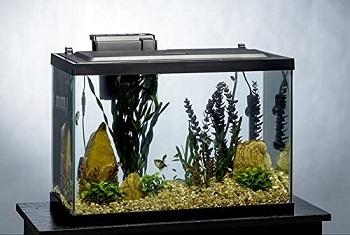 Tetra ColorFusion Aquarium