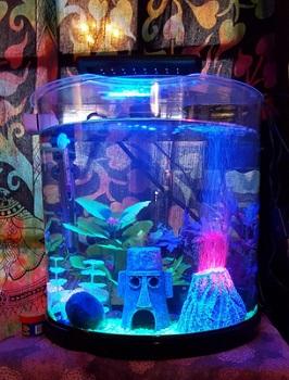 Tetra Half Moon Aquarium Kit