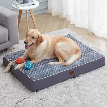 Western Home Orthopedic Dog Bed