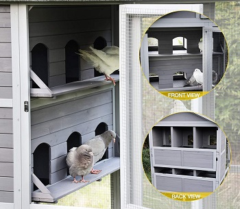 Aivituvin Large Pigeon Cage