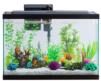 Aqua Culture Glass Aquarium