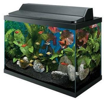Aqueon Deluxe Kit Aquarium