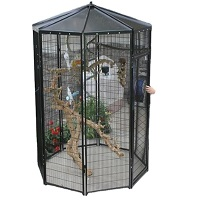 BEST ANTIQUE OUTDOOR PARROT AVIARY Summary