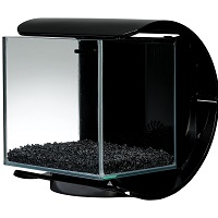 BEST DECORATION 3-GALLON GLASS FISH TANK summary