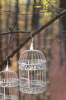 BEST HANGING VINTAGE BIRD CAGE