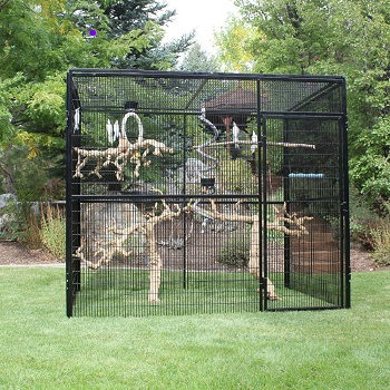 BEST LARGE OUTDOOR PARROT AVIARY