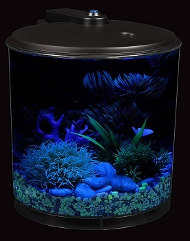 BEST OF BEST ACRYLIC CYLINDER FISH TANK