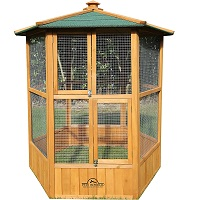 BEST OF BEST AVIARY FOR PIGEONS SUmmary