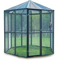 BEST OF BEST OUTDOOR PARROT AVIARY Summary