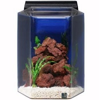 BEST PLANTED 20-GALLON FISH TANK WITH LID summary