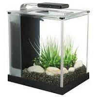 BEST SMALL 3-GALLON GLASS FISH TANK SUMMARY