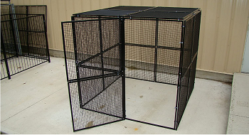 BEST SMALL OUTDOOR PARROT AVIARY