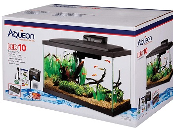 BEST WITH FILTER 20-GALLON GLASS TANK