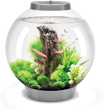 BEST WITH FILTER 3-GALLON FISHBOWL