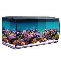 BEST WITH FILTER 30-GALLON RIMLESS TANK summary