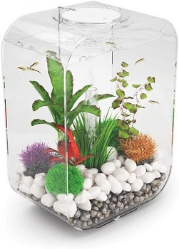 BEST WITH FILTER 4-GALLON TANK