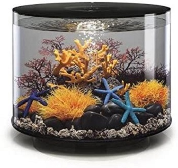 BEST WITH FILTER ACRYLIC CYLINDER FISH TANK