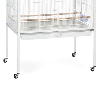 BEST WITH STAND INDOOR FINCH AVIARY
