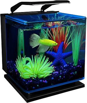 GloFish-Betta-Shadowbox-Aquarium-Kit