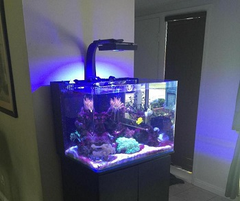 JBJ Lighting Cube Aquarium