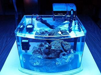 JBJ Picotope Aquarium Kit
