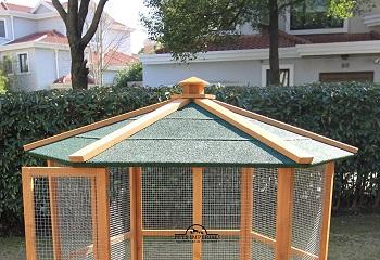 Pets Imperial Canopy Aviary