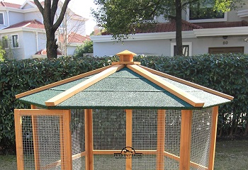 Pets Imperial Stunning Wooden Bird Aviary