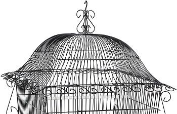 Prevue Hendryx Designer Cage