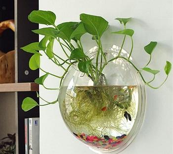 Sweetsea Wall Fish Tank Bowl