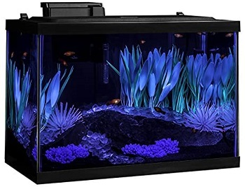Tetra ColorFusion Fish Tank Kit