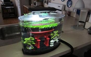 Tetra Crescent Aquarium Kit