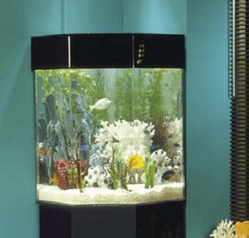 Tucker Murphy Pet Alan Aquarium Tank