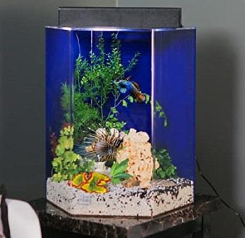UniQuarium Acrylic Tank