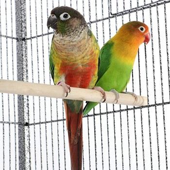 Yaheetech Wrought Iron Bird Cage