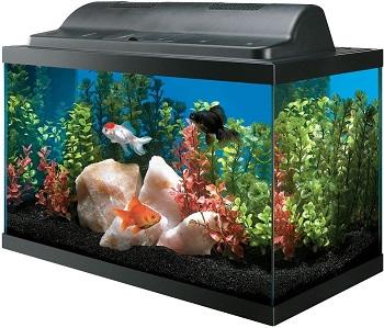 Aqueon Basic Kit Aquarium