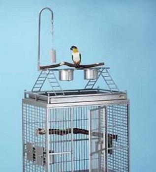 Avian Adventures Chiquita Bird Cage