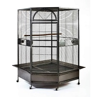 BEST AFRICAN GREY PARROT ENCLOSURE Summary