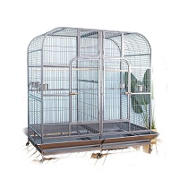 BEST ANTIQUE DOUBLE MACAW CAGES ummary