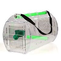 BEST CARRIER FOR AFRICAN GREY Summary