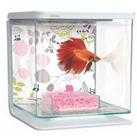 BEST CUBE SMALL CHEAP FISH TANK summary