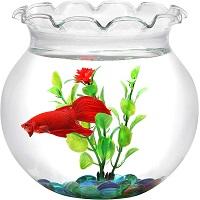 BEST DECORATION 1 GALLON FISHBOWL summary