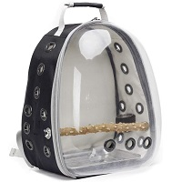 BEST OF BEST AIRLINE APPROVED BIRD CARRIER Summary