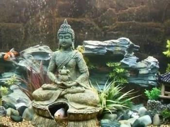 BEST OF BEST BUDDHA AQUARIUM DECORATION