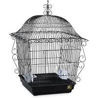 BEST OF BEST DECORATIVE METAL BIRD CAGE SUmmary