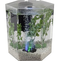 BEST OF BEST SMALL CHEAP FISH TANK summary
