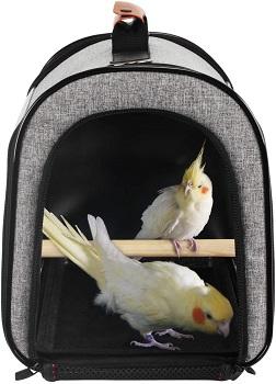BEST OUTDOOR SMALL BIRD CARRIER