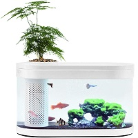 BEST WITH FILTER COOL HOME AQUARIUM summary