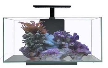 BEST WITH FILTER MIXED REEF TANK