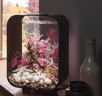 Biorb Life Aquarium