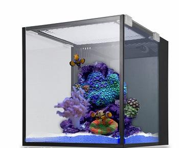 Innovative Marine Fish Tank